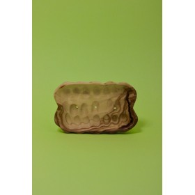 Olive wood rectangular soap...