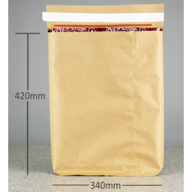 Paper Mailing Bag with...