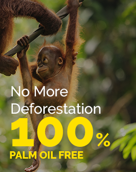 No More Deforestation